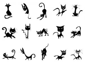 Koci ogon może wyrażać różne emocje.