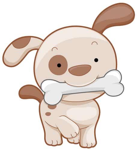 Kości są kruche i łamliwe - rozgryziony, ostry fragment może wbić się w ścianę żołądka lub jelita i przedziurawić je. Jeśli ten odcinek drogi kość przebrnie bezkolizyjnie to może utkwić w odbycie. A prawda jest taka, że pies nie musi jeść kości i pozbawienie go tej atrakcji w żaden sposób nie odbije się na jego psychice. Kości dla pieska to jeden z mitów, w jaki niezachwianie wierzymy.