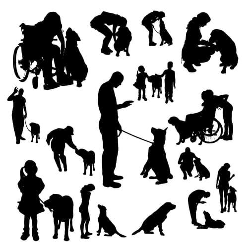 Czy każdego psa można wytresować?