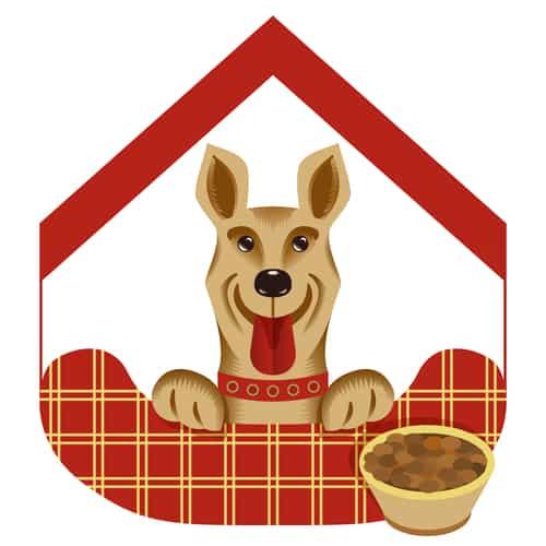 Hotel dla psów - czy to dobre rozwiązanie?