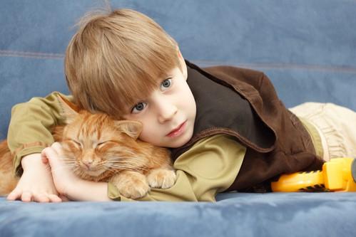 Socjalizacja kota z człowiekiem