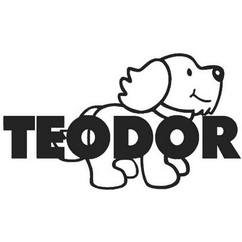 Przychodnia Weterynaryjna Teodor
