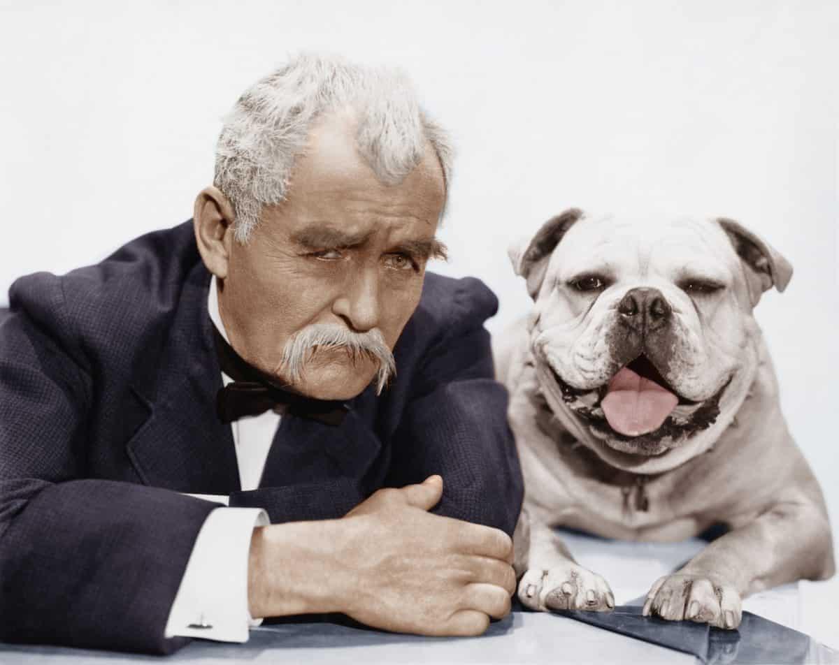 Emocje właściciela a zachowanie psa