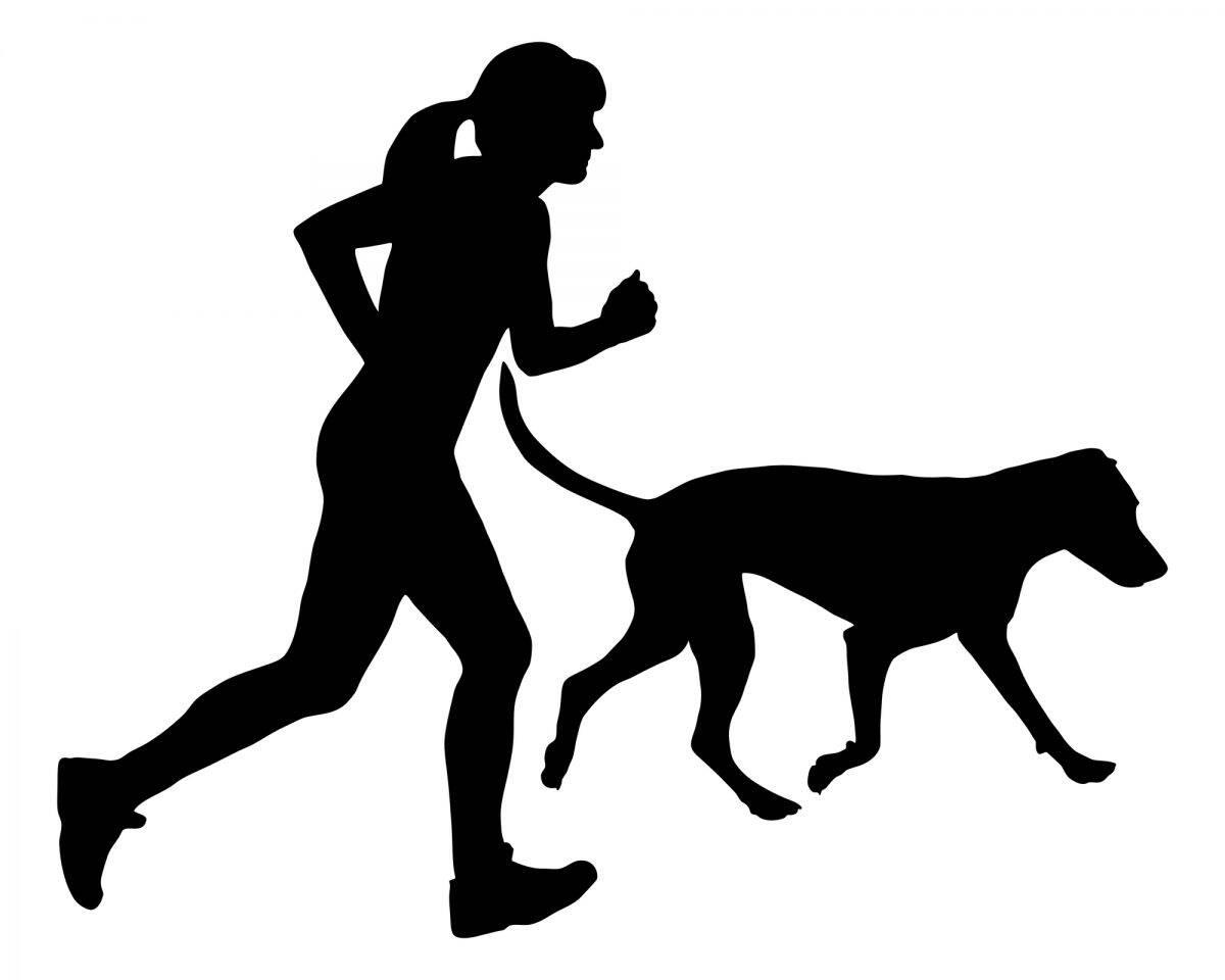 Maraton dla psa - czy jest zdrowy?