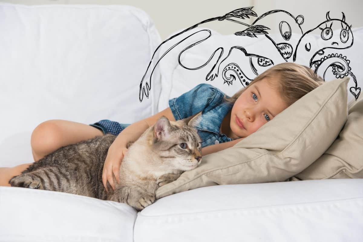 Jak kot reaguje na napięcie w domu?
