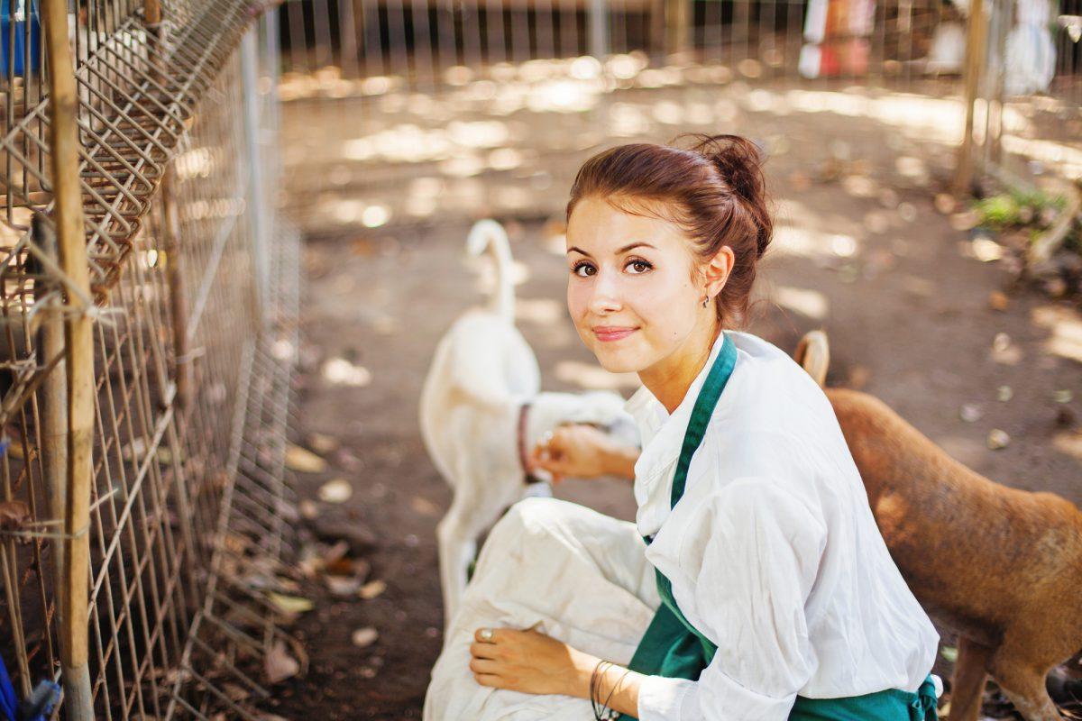 Schronisko dla bezdomnych zwierząt na Paluchu potrzebuje wolontariuszy